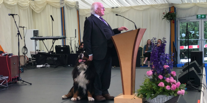 Michael D Higgins, Irish President giving a speech with his dog