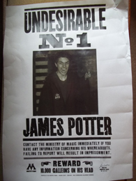 Will Dunn/James Sirius Potter Undesirable No. 1 poster
