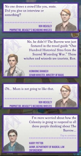 Ron Weasley, Hermione Granger, and Harry Potter discuss the Calamity's focus on the Burrow.