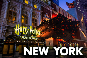 Cursed Child New York