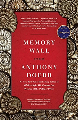"""Cover image of """"Memory Wall"""""""