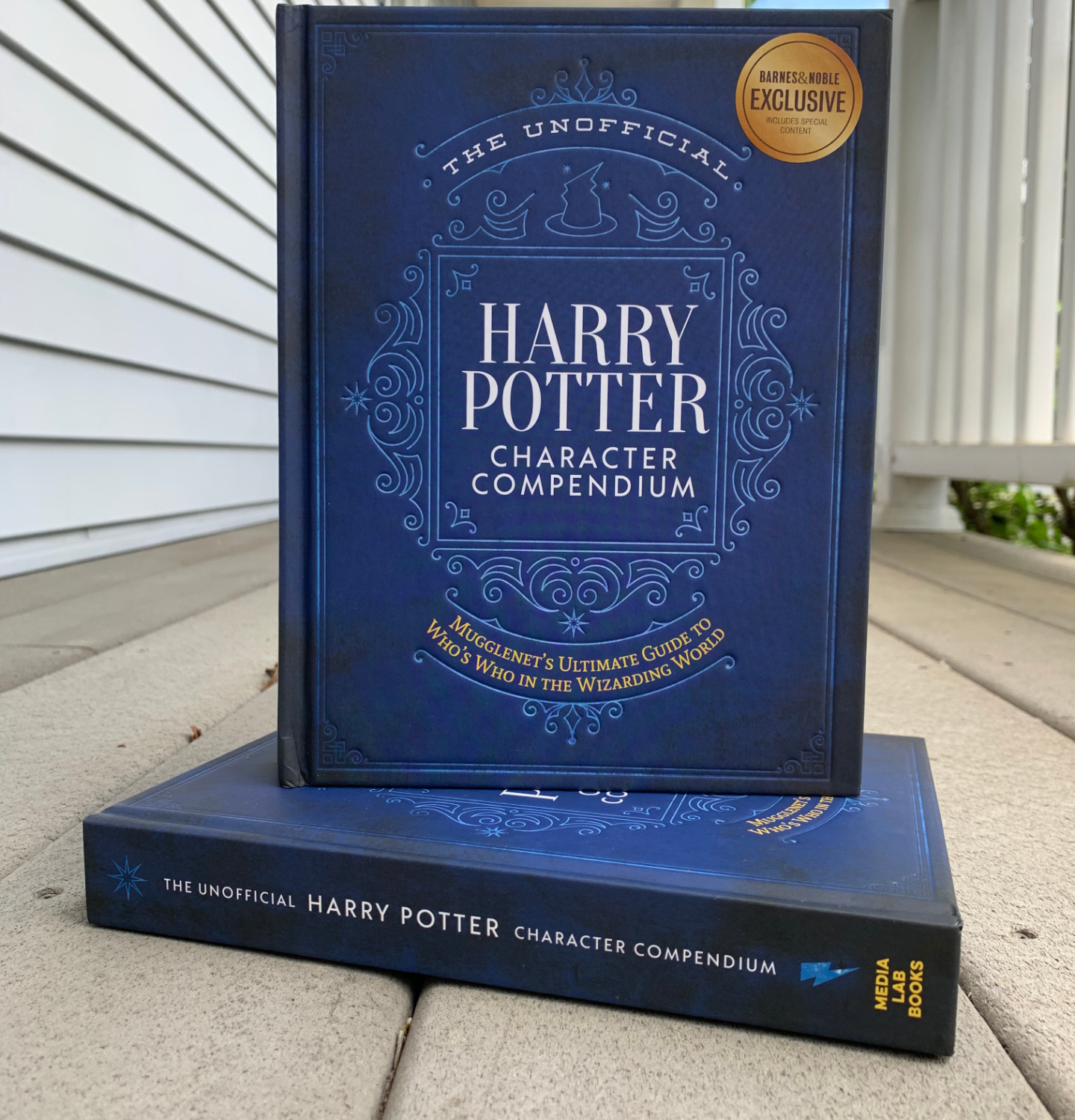 "A copy of ""The Unofficial Harry Potter Character Compendium"" stands slightly open on top of a second copy of ""The Unofficial Harry Potter Character Compendium,"" the spine of which faces the camera."