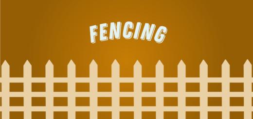 Fencing Wizolympics Tokyo 2020
