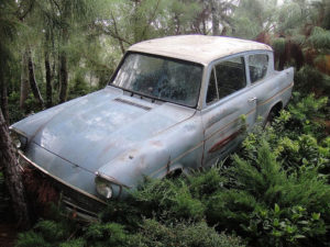 The Ford Anglia is lost in the Forbidden Forest