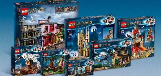 LEGO Ideas Grand Prize Winner