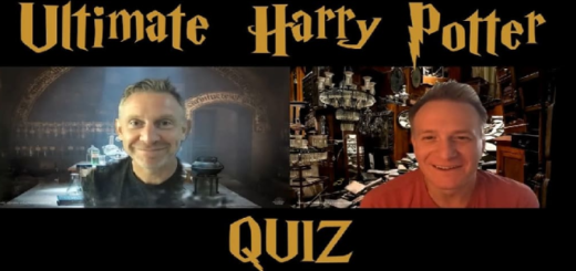 "Jamie Parker and Paul Thornley hosting a ""Harry Potter"" quiz."