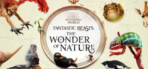 Fantastic Beasts: The Wonder of Nature exhibition promotional graphic