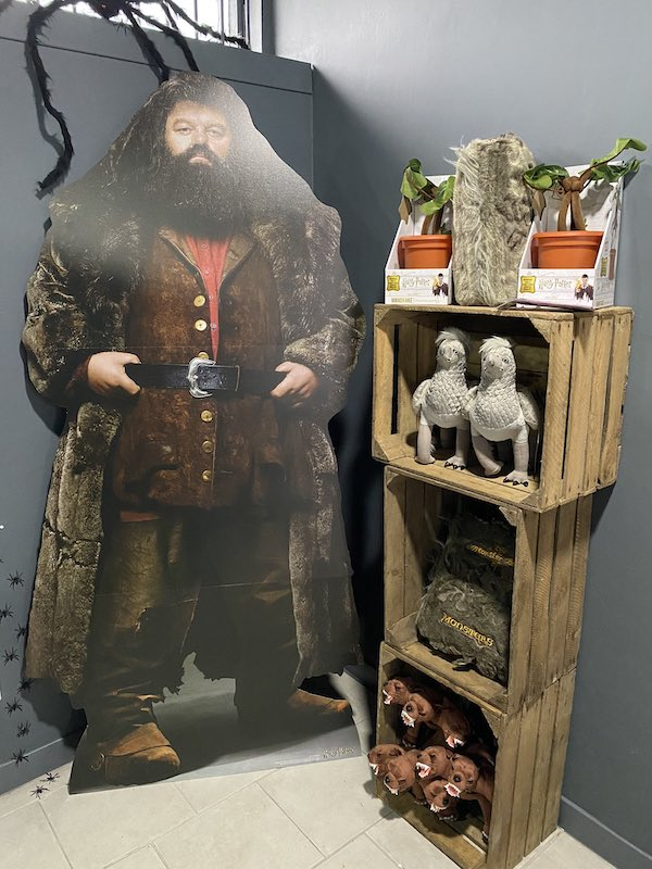 An image of Hagrid's corner it The Shop That Cannot Be Named.