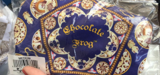This image from WDW News Today shows the new Chocolate Frog box face mask at Universal Orlando Resort as a featured image.