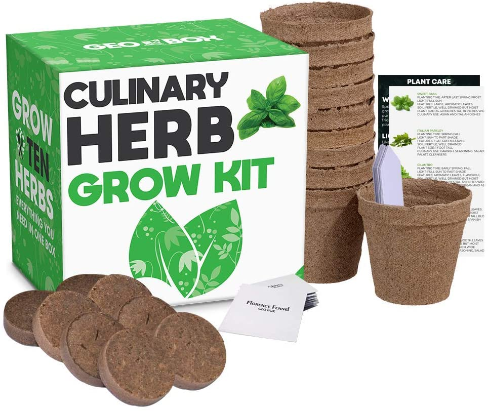 This kit can be used to grow your own herbs indoors.
