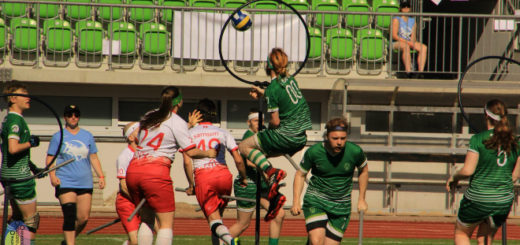 There is one keeper from Ireland who is jumping (but it looks like he's flying) and looking at the quaffle in hoops in the middle. There are three players in pink jerseys and four other players from Ireland.
