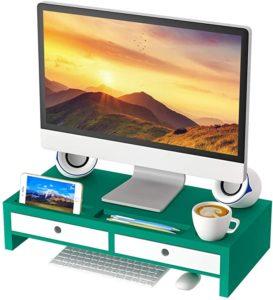 Green monitor riser and organizer