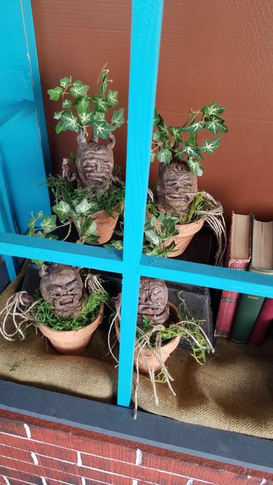 Baby Mandrakes