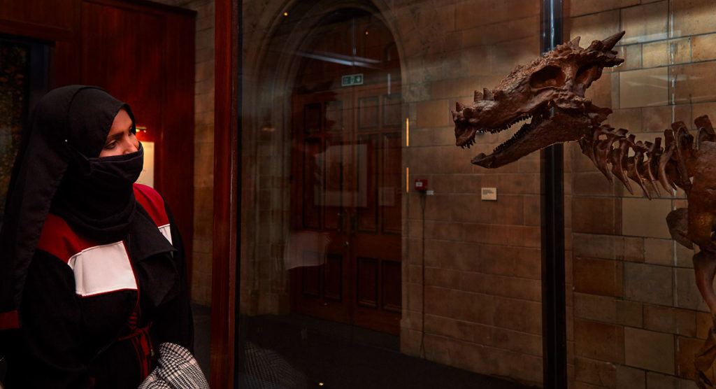 Dracorex Hogwartsia is displayed in the Natural History Museum exhibit as part of the Fantastic Beasts: The Wonder of Nature exhibit.
