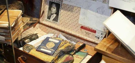 Newt's suitcase is displayed in the Natural History Museum exhibit as part of the Fantastic Beasts: The Wonder of Nature exhibit.