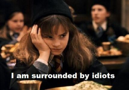 """Hermione looking glum, slumped over with her hear resting in her hand. The image is captioned, """"I am surrounded by idiots"""""""