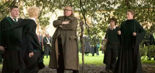 Harry Potter scene with Brendan Gleeson