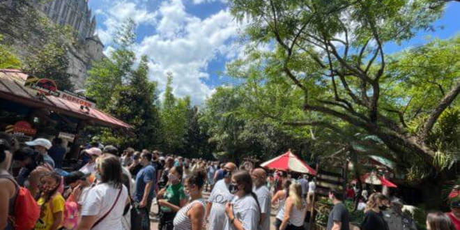 Crowds flocking to The Wizarding World of Harry Potter at Universal Orlando Resort