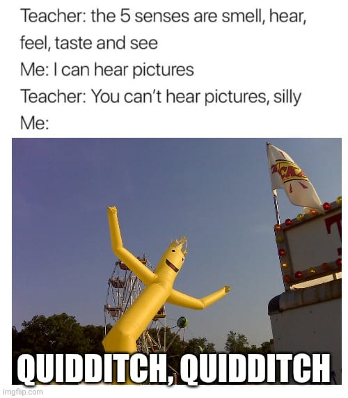 """After the Slovenian song or Austrian song, """"quidditch, quidditch"""" will get stuck in your head."""