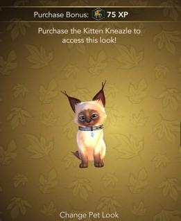 Siamese kitten Kneazle