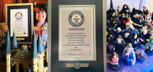 Tracey Nicol-Lewis, the holder of the Guinness World Record for the largest collection of Wizarding World memorabilia, is pictured in a featured image that also features a photographs of her certificate and part of her collection.