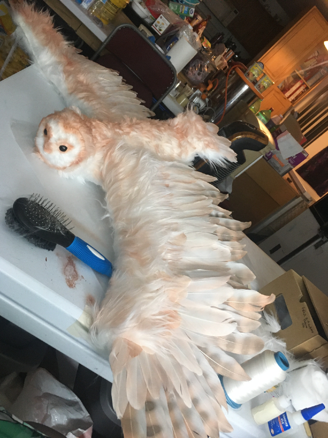 Copper has every detail a real owl would have, including wing span, mobility, and correct feather placement.