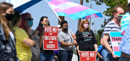 Multiple protesters stand with signs and transgender flags as they protest against Florida's HB1/SB10 and HB391.
