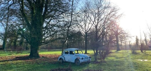 Manoir Bois-en-Ardres's flying Ford Anglia