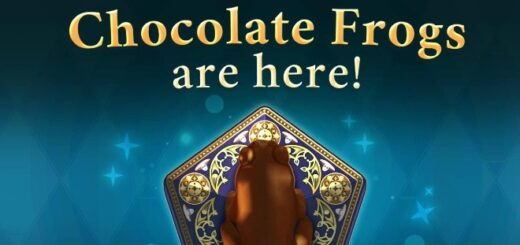 HP HM Chocolate Frogs