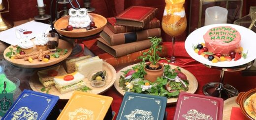 """An image of all the items available from the """"Harry Potter"""" cafe in Japan."""