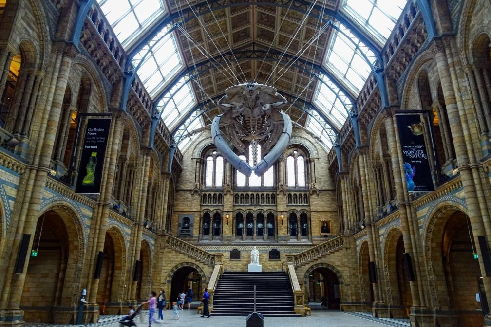 This is the London Natural History Museum.
