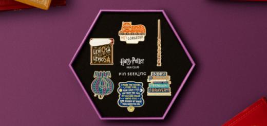 Hermione Essentials Pin Set